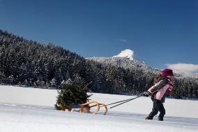 winter-schlitten-fahren-eschenbach